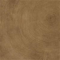 PROVENZA - W-AGE - Glazovaná slinutá dlažba, | Ring-60x60x1cmRT